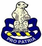 4th Battalion, 31st Infantry Regiment