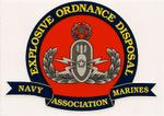 Explosive Ordnance Disposal Officer