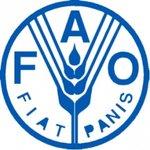 FAO - Latin America