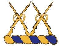 5th Battalion, 20th Infantry Regiment