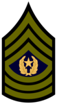Section Sergeant