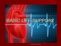 Basic Life Support (BLS) Instructor
