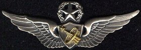 army astronaut badge - 280×101