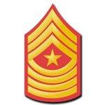 Sergeant Major/First Sergeant