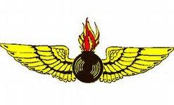 Aviation Ordnance Officer