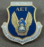 Flight Training Instructor