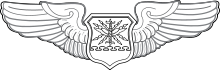 Air Operations Officer