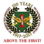 1st ID Combat Aviation Brigade