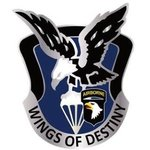 101st Combat Aviation Brigade
