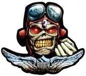 1st Battalion, 101st Aviation Regiment