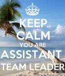 Assistant Team Leader