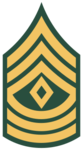 Detachment Sergeant