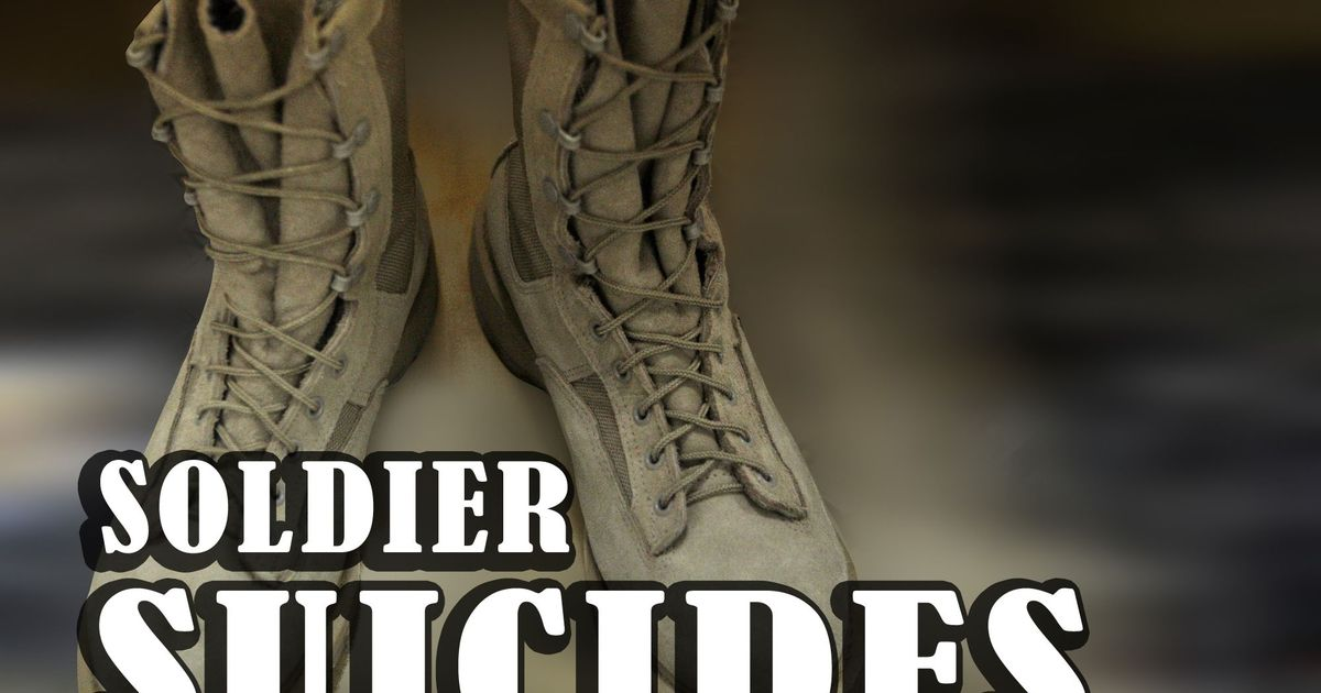 suicides in the us military essay