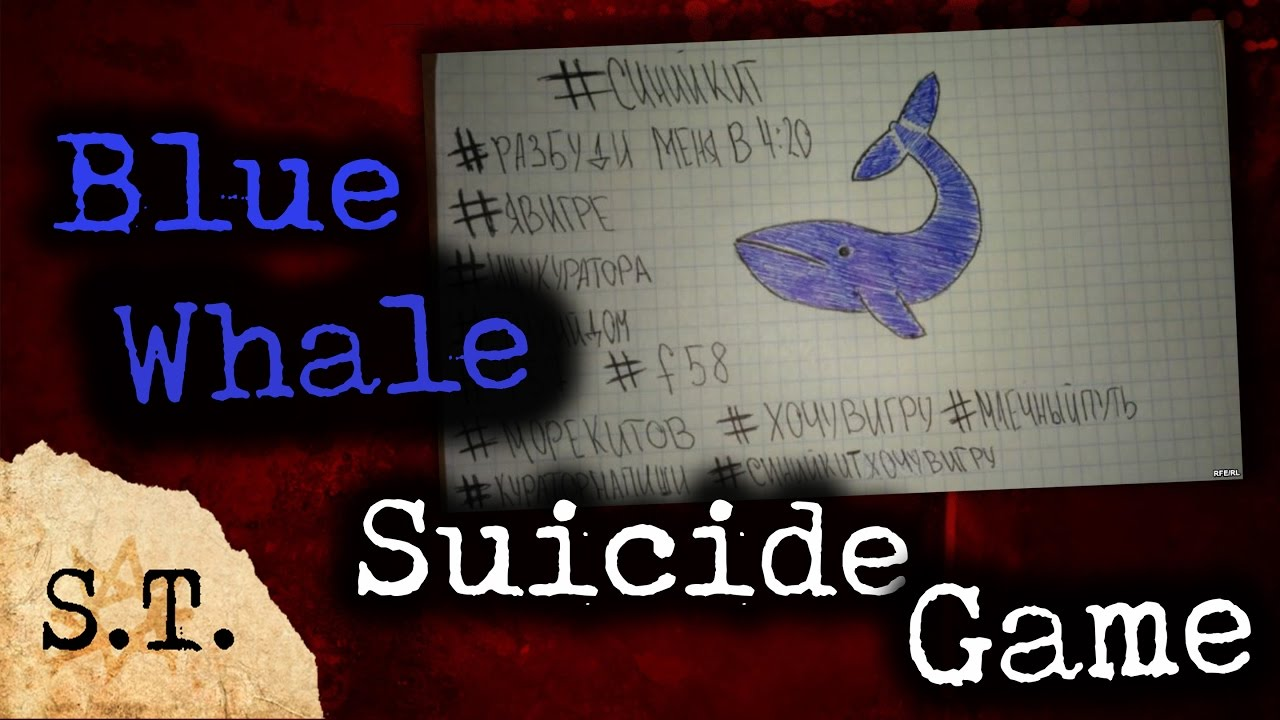 blue whale suicide game