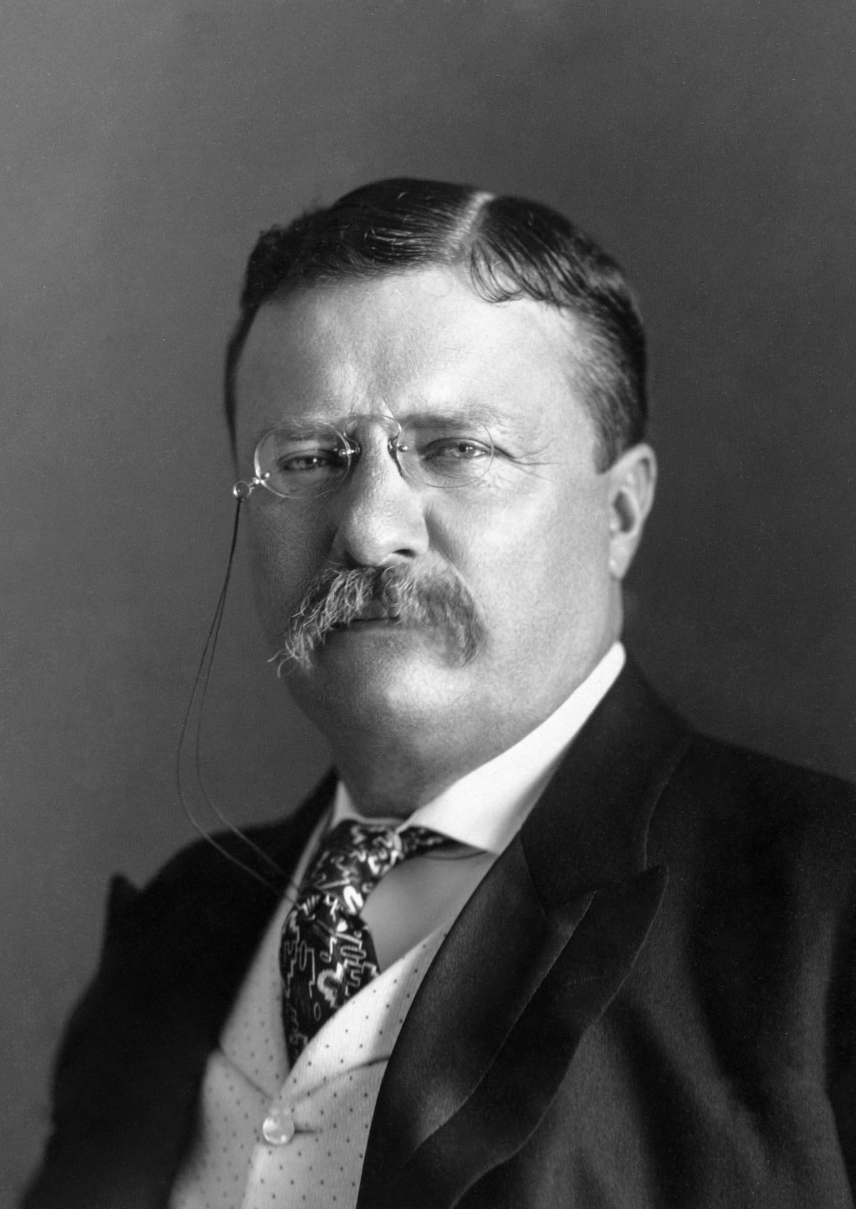 theodore roosevelt one of the most Roosevelt was an attractive recruit for the party because theodore roosevelt was still one of the country's most as theodore roosevelt franklin d roosevelt.