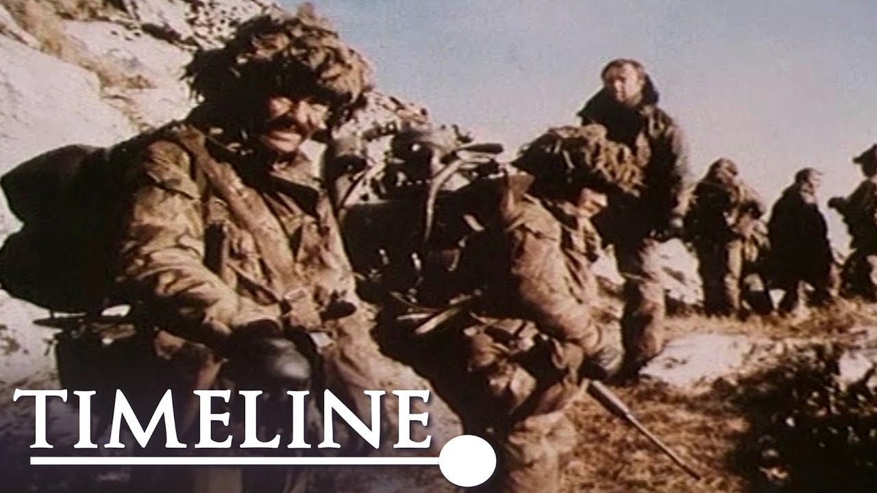 air campaign in falklands war essay
