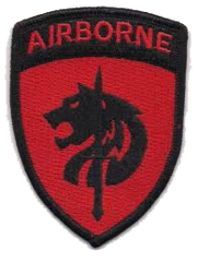 528th Army Liaison Element - Africa