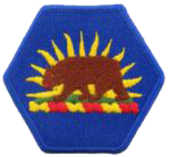 100th Troop Support Command