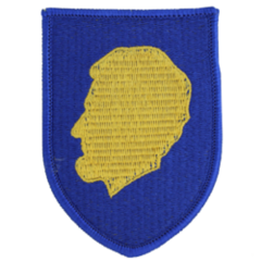 129th Regiment (Regional Training Institute)