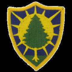 251st EN Co. (Sapper)
