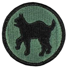 81st Regional Support Command