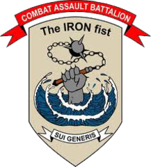 3rd Combat Assault Battalion