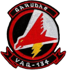 Electronic Attack Squadron 134