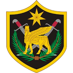 Multi National Force - Iraq