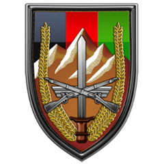 US Forces - Afghanistan