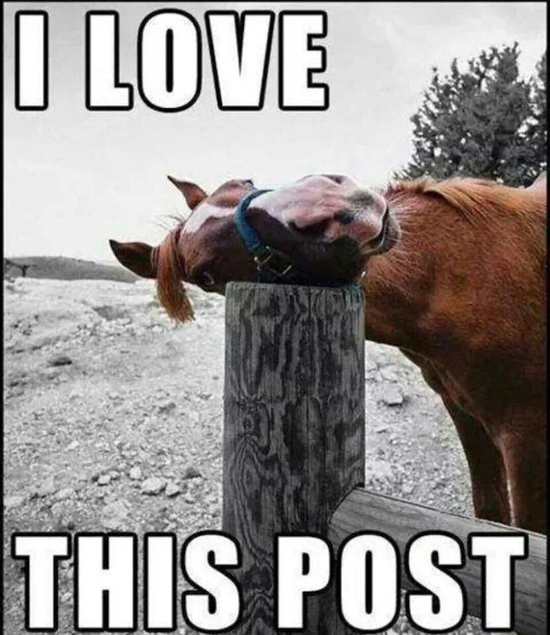 Thispost