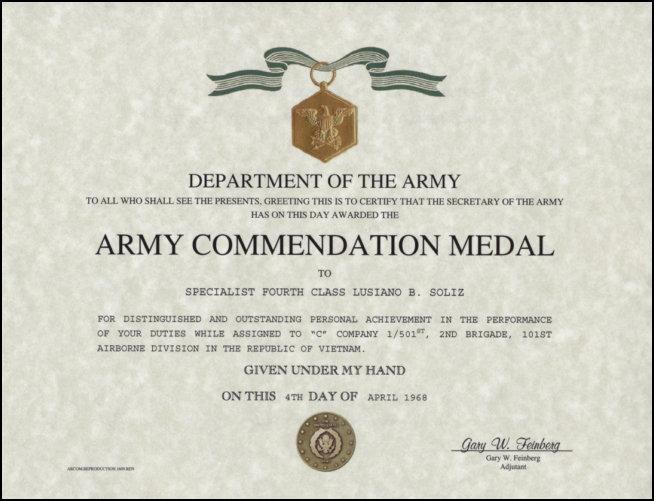 army aam award citation