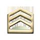Cadet SSG
