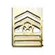Cadet CSM